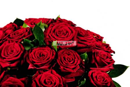 Bouquet Pomo! Red roses by the piece