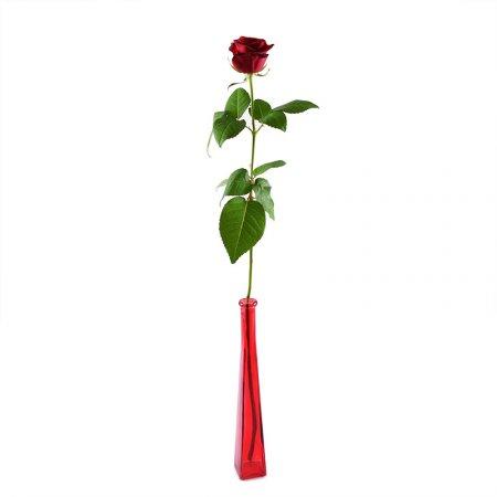 Букет 1 красная роза