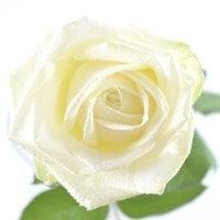 Букет Поштучно белые розы