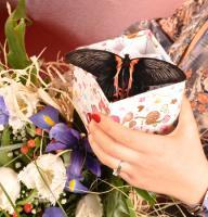 Товар Валентинка с живой бабочкой