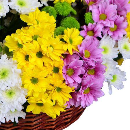 Букет Корзина из хризантем (101 шт.)