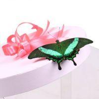 Букет Прозрачная коробка с бабочками