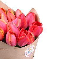 Букет 19 красных тюльпанов