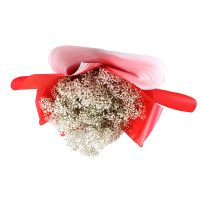 Bouquet Bouquet of baby\'s breath