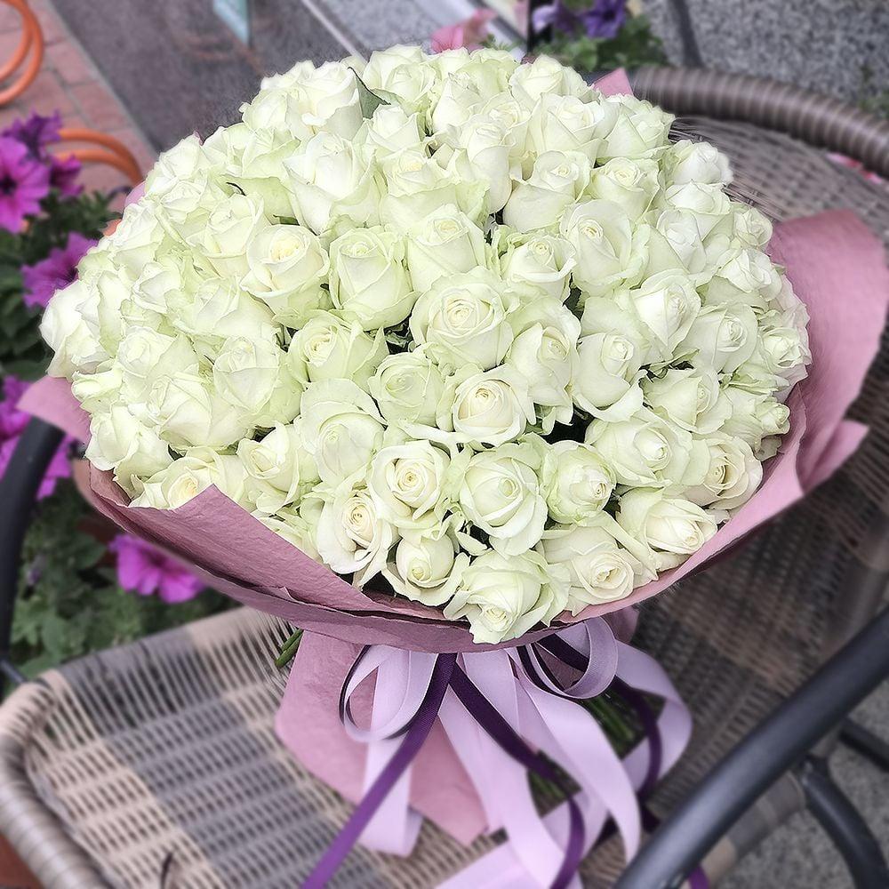 Картинки 101 роза белые, молодая