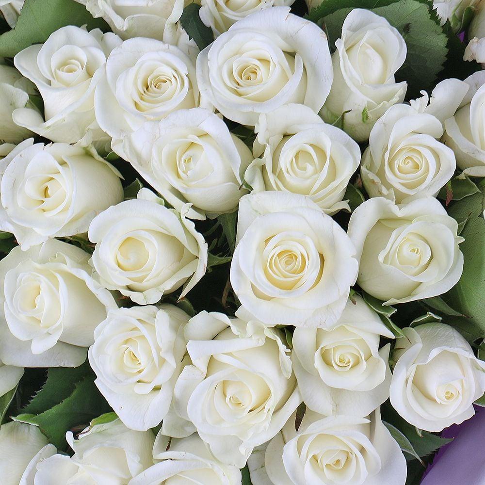 Белые розы картинки, открытках