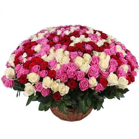 Букет Ассорти 301 роза