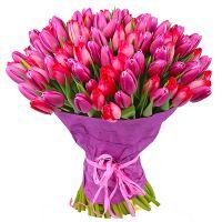 Букет из тюльпанов (101 шт.)
