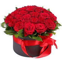 Марго 31 красная роза