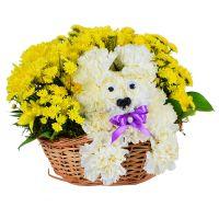 Корзина цветов, игрушка из цветов, щенок из цветов, цветы ребенку, животное из цветов, милые букеты,