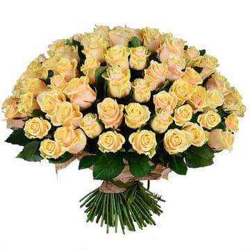 101 кремовая роза Нойальбенройт