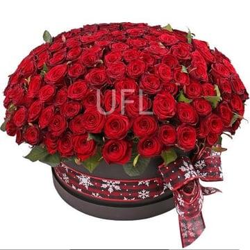 201 роза в коробке Барановичи