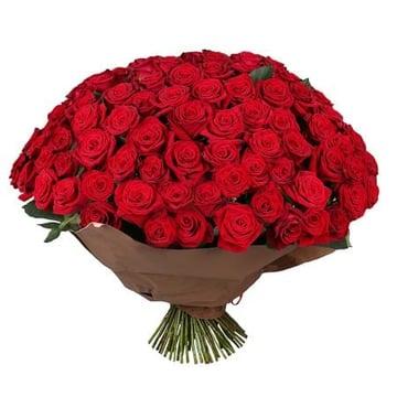 Обольщение 101 роза Нойальбенройт