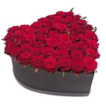 51 роза в коробке Барановичи