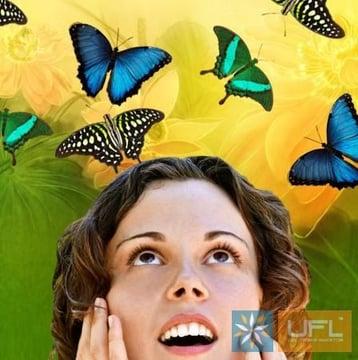 Салют из 10 бабочек Киев
