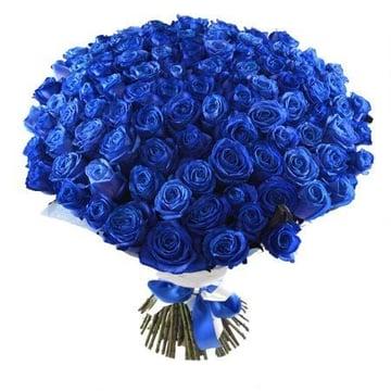101 синяя роза Нойальбенройт