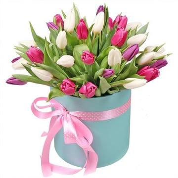 Тюльпаны в коробке 31 шт Киев