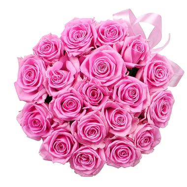 Розовые розы в коробке 23 шт Коминтерновское