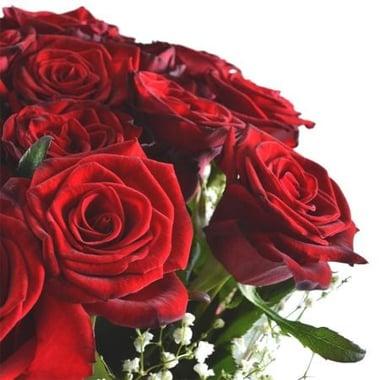 Зимний рассвет 11 алых роз Арыс