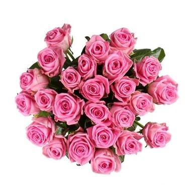 Быть с тобой 25 розовых роз Георгиевск