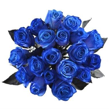 Синие розы Буфало Груф