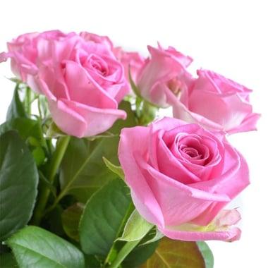Цветы поштучно розовые розы Гадсден