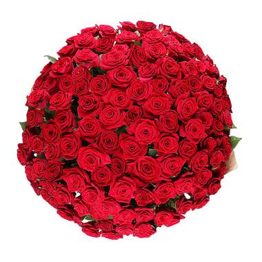 Обольщение 101 роза Федоровский