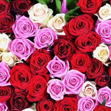 Сердце из роз Джулианова