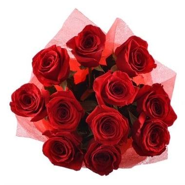 11 премиум роз Арыс