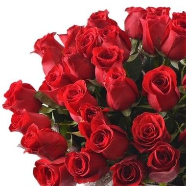 51 роза премиум Излучинск