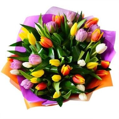 Букет тюльпанов 35 шт Амстердам Киев
