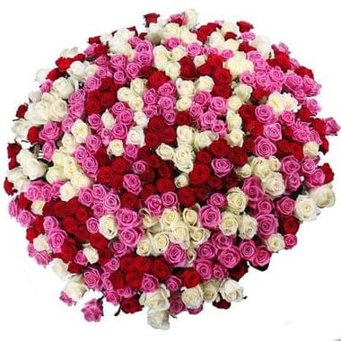 Ассорти 301 роза Киев