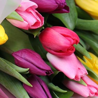 Весенний привет 11 тюльпанов Киев