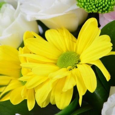 Весняний подарунок Київ