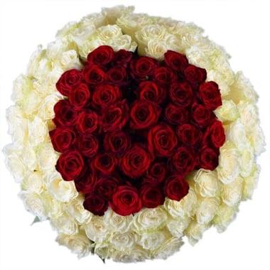 101 роза Королевский Федоровский