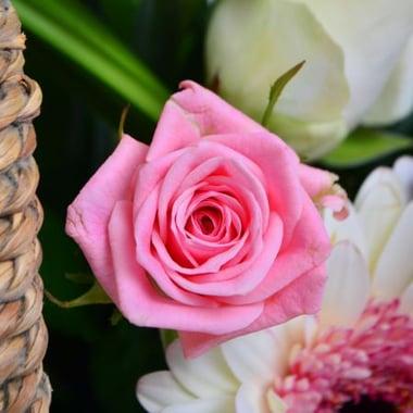 Корзина цветов с лентой Киев