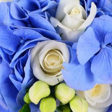 Букет невесты Голубое небо Киев