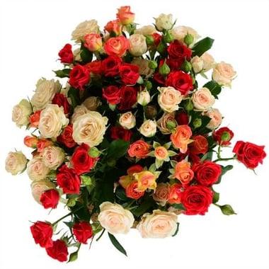Из кустовой розы Киев