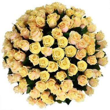 101 кремовая роза Федоровский