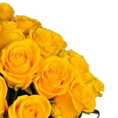 51 желтая роза Излучинск