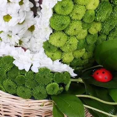 Игрушка из цветов - Зеленое яблоко Киев