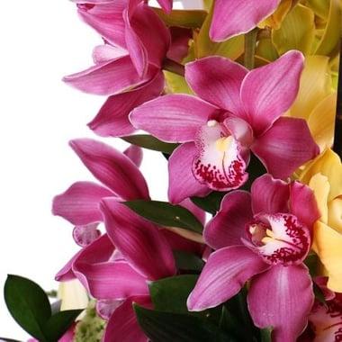 Бал орхидей Киев