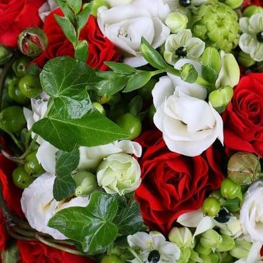 Червоно-біле кохання Київ
