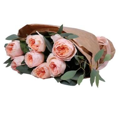 7 кремовых роз Дэвида Остина Ор-Эркеншвик