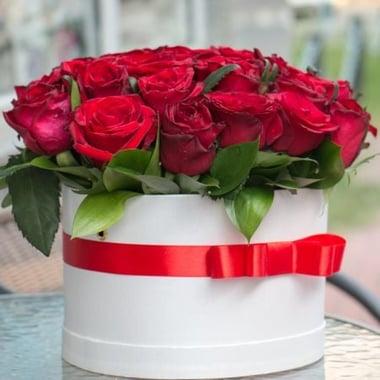 Карминовый сюрприз 35 роз в коробке Гаага