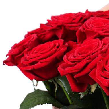 101 роза Федоровский