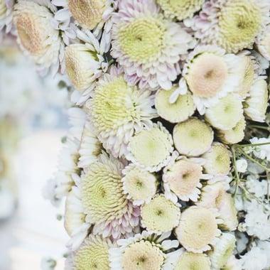 Игрушка из цветов - Прелестное пони Киев
