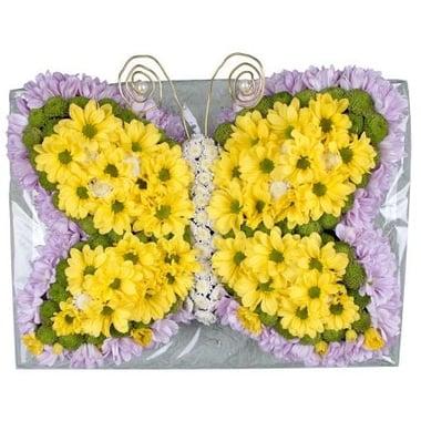 Золотистая цветочная бабочка Киев