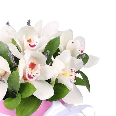 Нежность орхидей  Киев