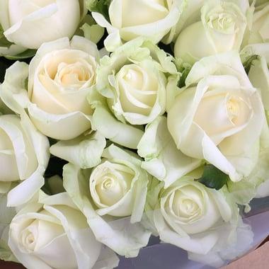 25 белых роз  Георгиевск